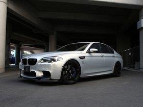 Ver foto 2 de BMW 3D Design M5 Moon Stone 2014