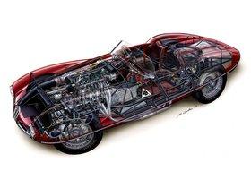 Ver foto 10 de Alfa Romeo 1900 C52 Disco Volante Spider 1359 1952