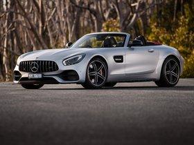 Ver foto 28 de Mercedes-AMG GT-C 2017