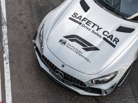 Ver foto 23 de Mercedes-AMG GT-R F1 Safety Car 2018