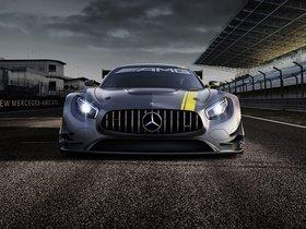 Ver foto 7 de Mercedes AMG GT3 2015