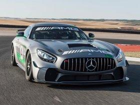 Ver foto 1 de Mercedes AMG GT4 2017
