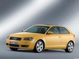 Ver foto 12 de Audi A3 2003