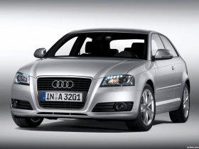 Ver foto 14 de Audi A3 8P 2008