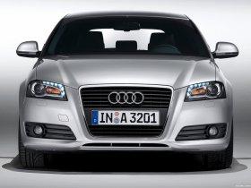 Ver foto 12 de Audi A3 8P 2008