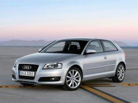Ver foto 10 de Audi A3 8P 2008