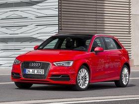 Ver foto 21 de Audi A3 Sportback e-Tron 2014