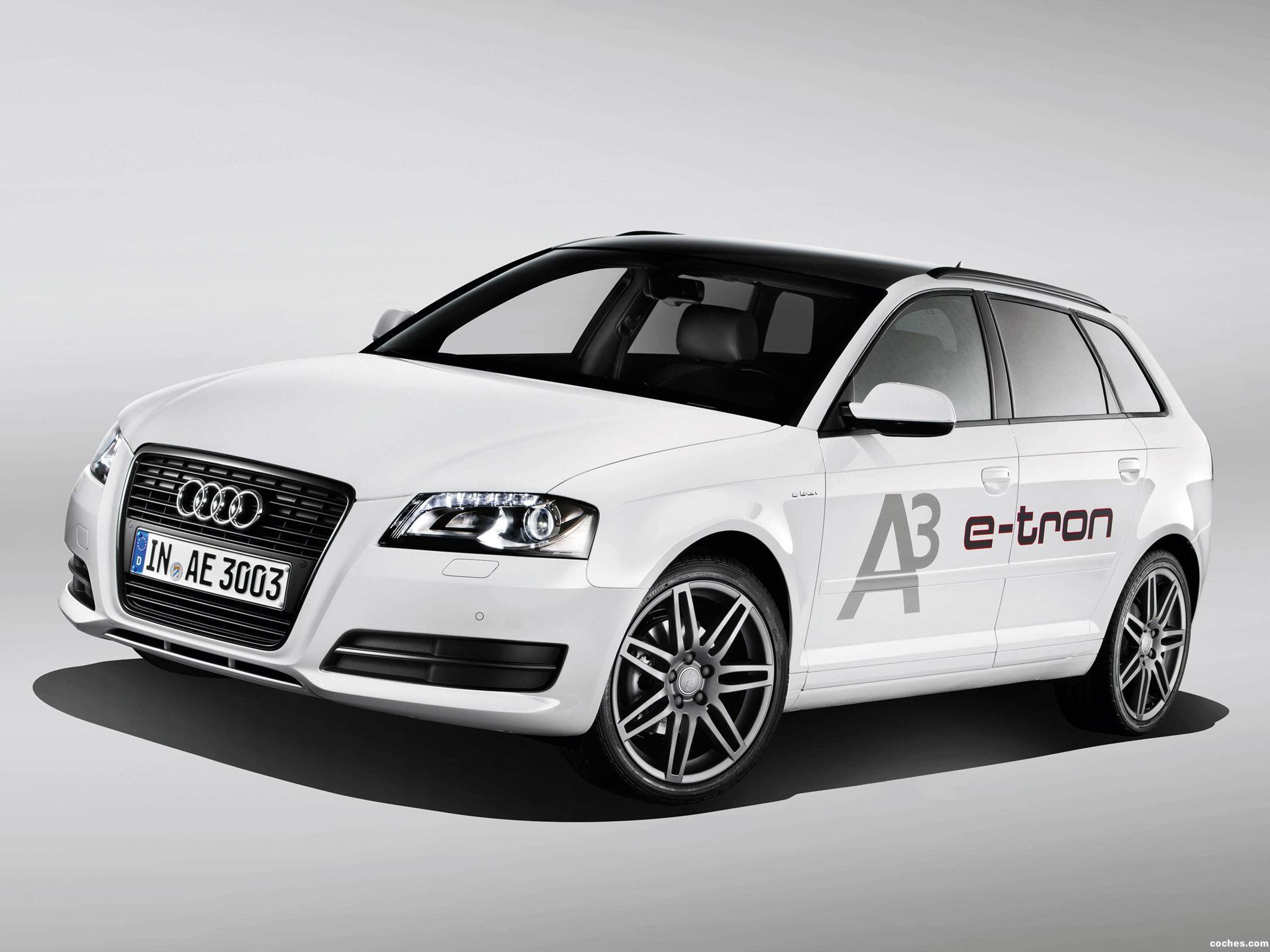 Foto 0 de Audi A3 e-Tron Prototype 8PA 2011