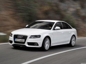 Ver foto 15 de Audi A4 Quattro 2008