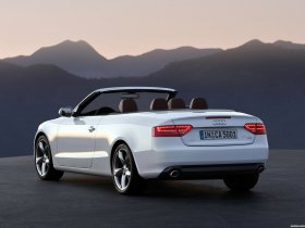 Ver foto 16 de Audi A5 Cabriolet 2009
