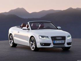 Ver foto 7 de Audi A5 Cabriolet 2009
