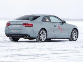 Ver foto 7 de Audi A5 e-tron Quattro Coupe 2011