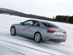 Ver foto 6 de Audi A5 e-tron Quattro Coupe 2011