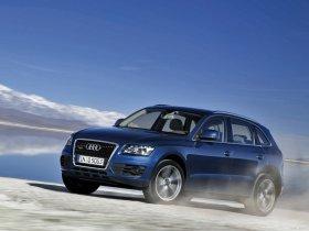 Ver foto 31 de Audi Q5 2008