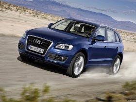 Ver foto 30 de Audi Q5 2008