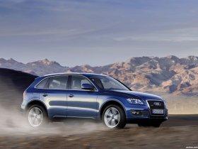 Ver foto 29 de Audi Q5 2008