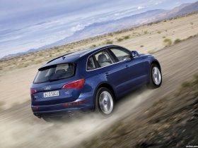 Ver foto 14 de Audi Q5 2008