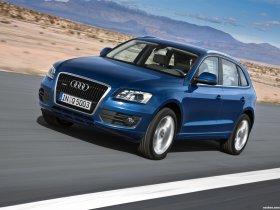 Ver foto 43 de Audi Q5 2008