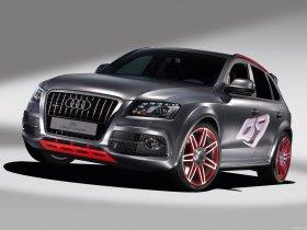 Ver foto 1 de Audi Q5 Custom Concept 2009