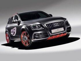 Ver foto 7 de Audi Q5 Custom Concept 2009