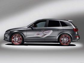 Ver foto 5 de Audi Q5 Custom Concept 2009