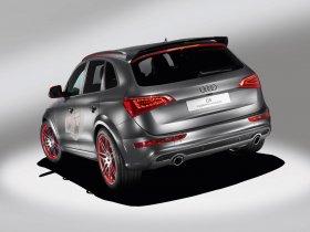 Ver foto 4 de Audi Q5 Custom Concept 2009
