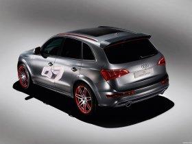 Ver foto 3 de Audi Q5 Custom Concept 2009