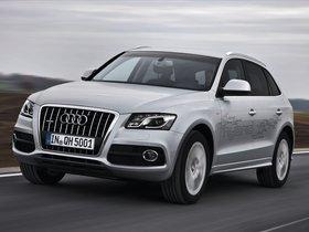 Ver foto 1 de Audi Q5 Hybrid 2011