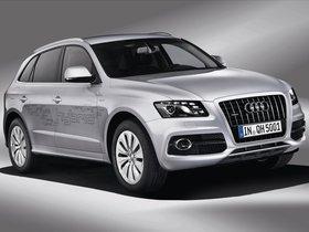 Ver foto 7 de Audi Q5 Hybrid 2011