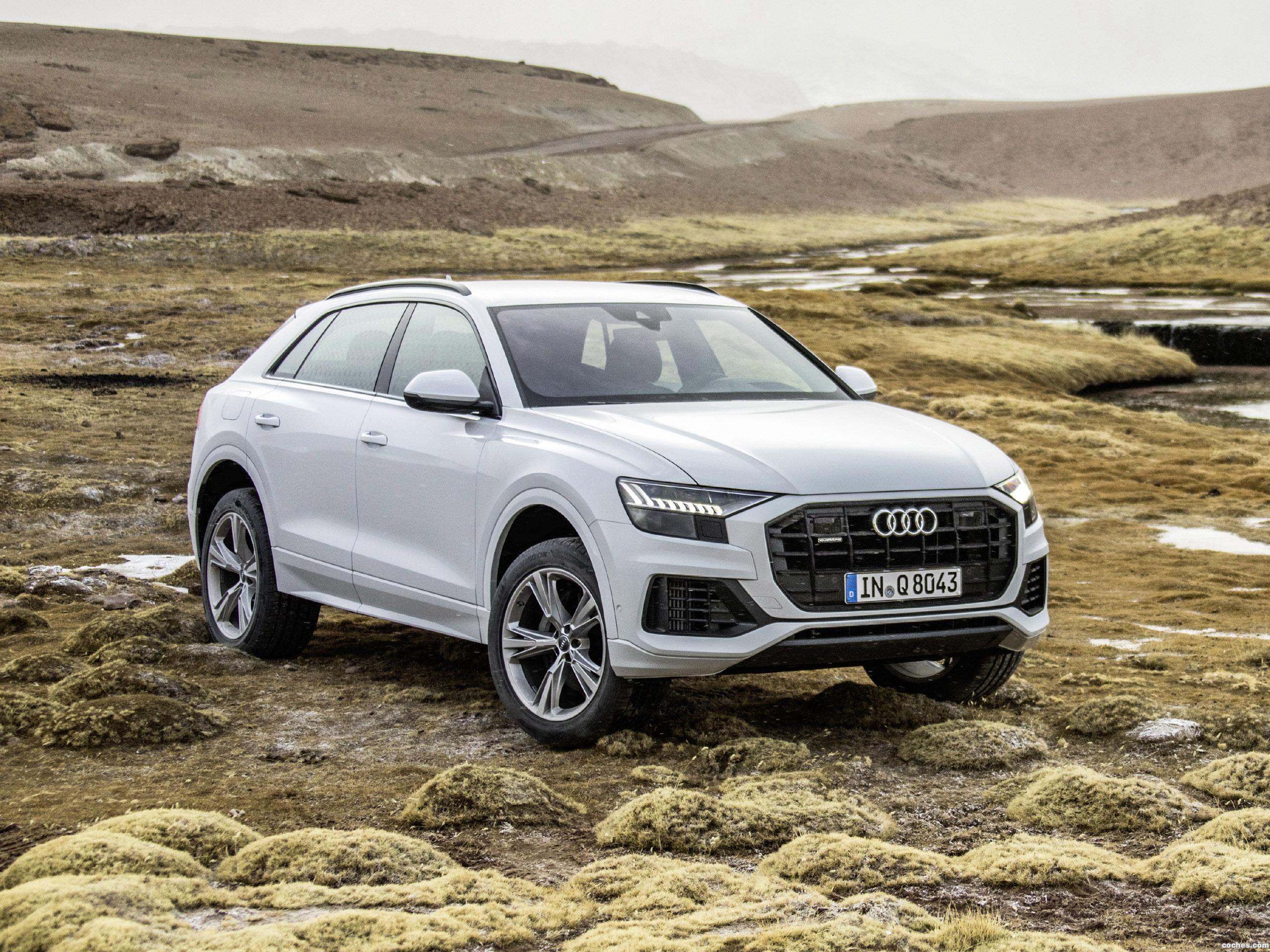 Foto 0 de Audi Q8 55 TFSI Quattro 2018