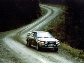 Ver foto 3 de Audi Quattro Group 4 Rally Car 1981