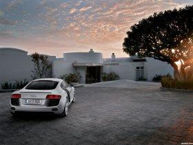 Ver foto 10 de Audi R8 2007