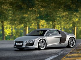 Ver foto 39 de Audi R8 2007