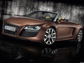 Ver foto 10 de Audi R8 Spyder 2010