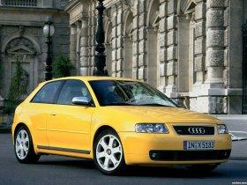 Ver foto 7 de Audi S3 1999