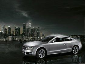 Ver foto 18 de Audi S5 2007