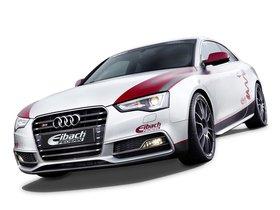 Ver foto 12 de Audi S5 Eibach Project Car 2012