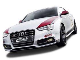 Ver foto 11 de Audi S5 Eibach Project Car 2012
