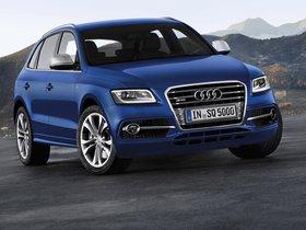 Ver foto 26 de Audi SQ5 2012