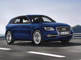 Ver foto 22 de Audi SQ5 2012