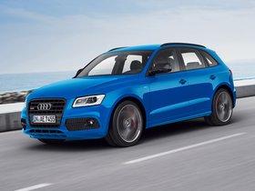 Ver foto 10 de Audi SQ5 TDI Plus 2015