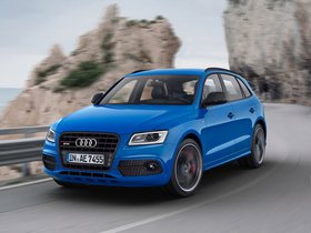 Ver foto 8 de Audi SQ5 TDI Plus 2015