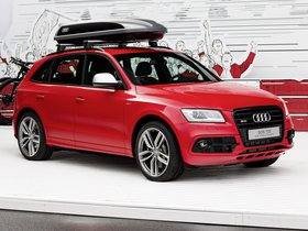 Fotos de Audi SQ5 Worthersee Edition 2014