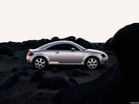 Ver foto 15 de Audi TT 1999