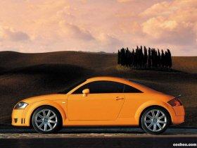 Ver foto 13 de Audi TT 1999