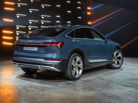 Ver foto 16 de Audi e-tron 55 quattro Sportback S line 2020