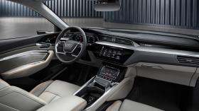 Ver foto 22 de Audi e-tron 55 quattro 2019