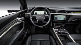 Ver foto 18 de Audi e-tron 55 quattro 2019