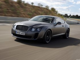 Ver foto 14 de Bentley Continental-GT Supersports 2009