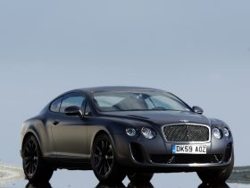 Ver foto 10 de Bentley Continental-GT Supersports 2009